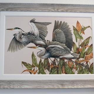 Heron Print