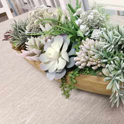 Succulents Decor