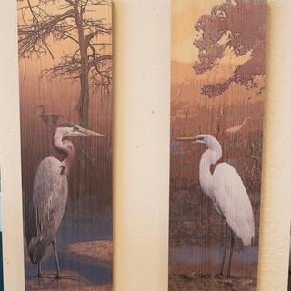 Florida Bird Print on Wood