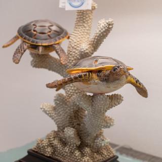 Turtle Table Lamp