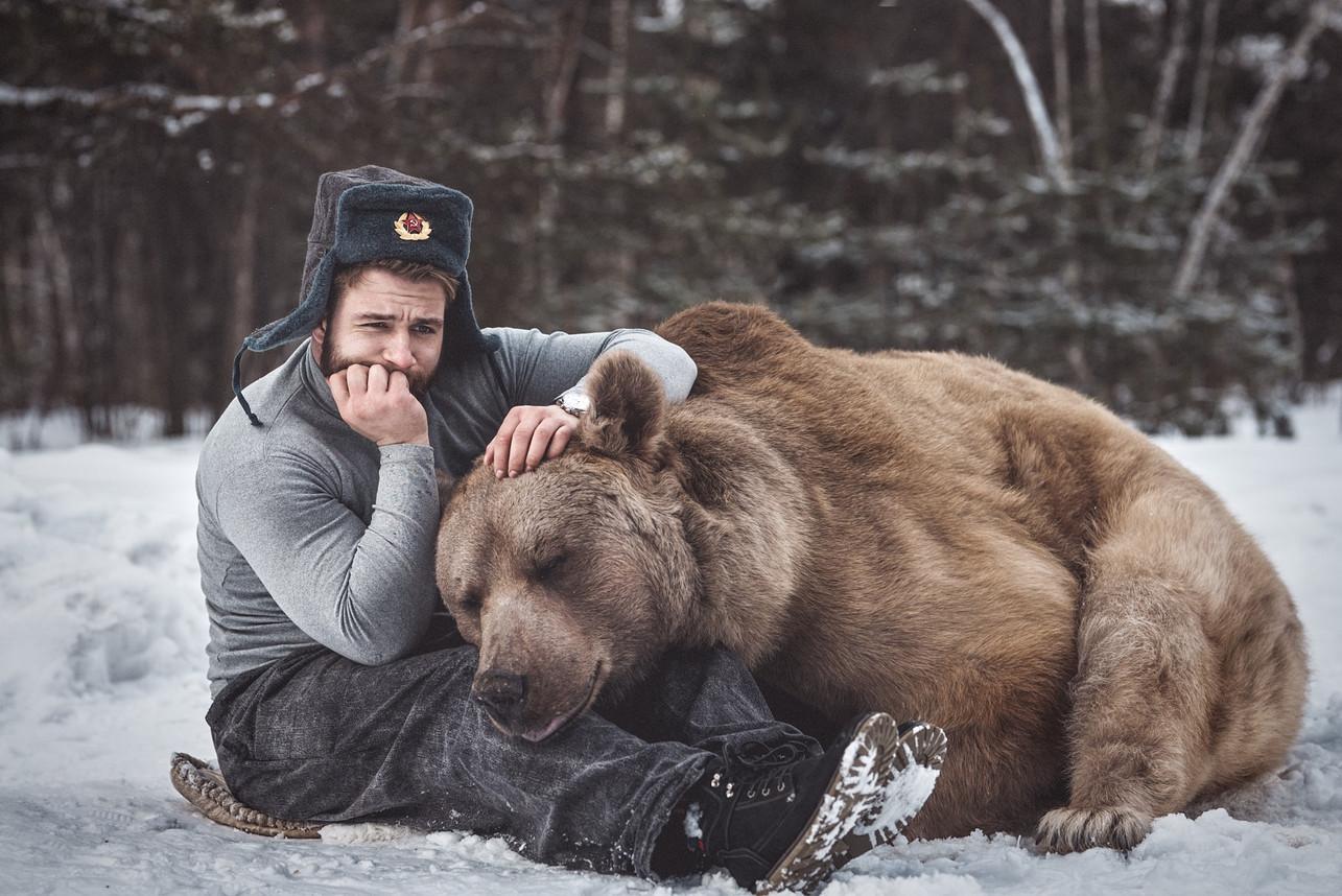 Дружба с медведем