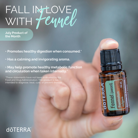 Fall in Love with Fennel