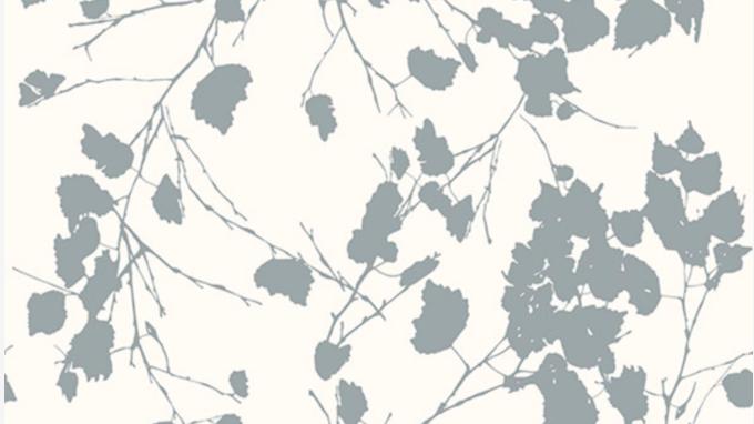 Birch Leaves 510221
