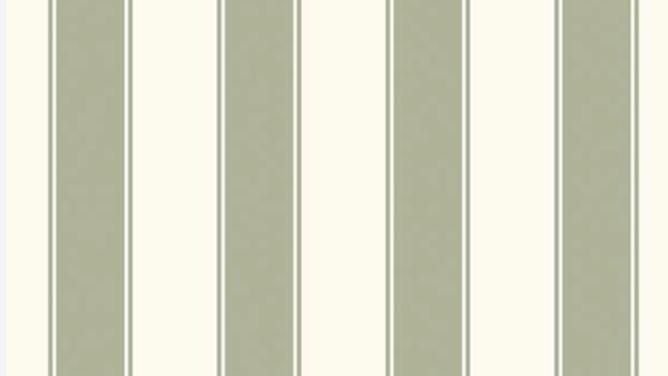 Stripes of Legacy 580542