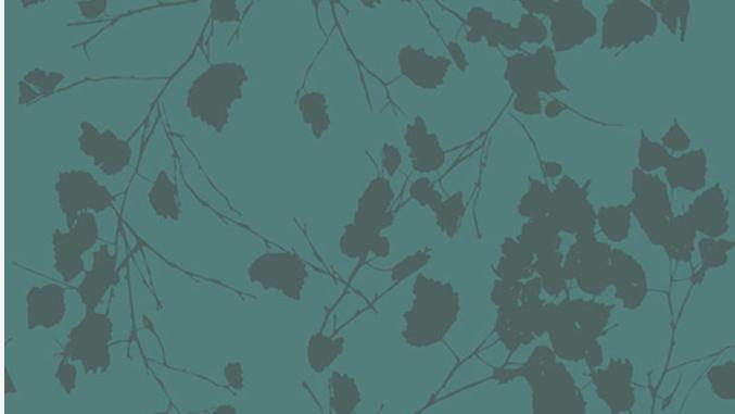 Birch Leaves 510225