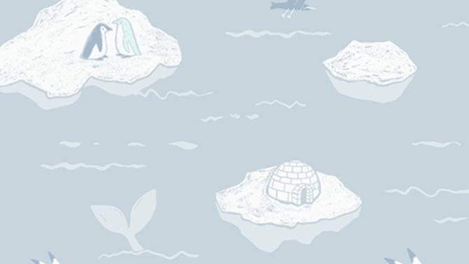 Arctic 640306