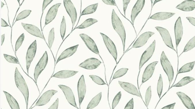 Soft Leaves 620515