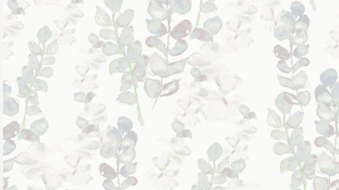 Eucalyptus 510440