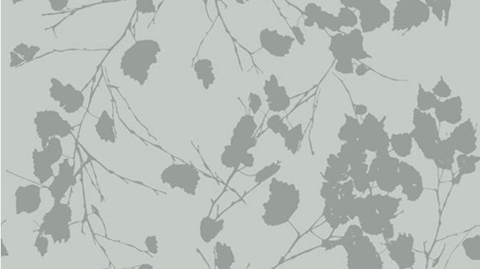 Birch Leaves 510224