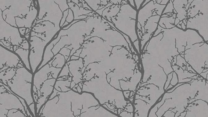 Silhouette of Tree 490518