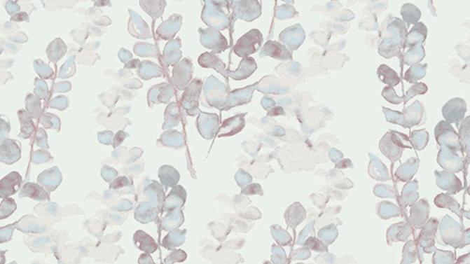 Eucalyptus 510442