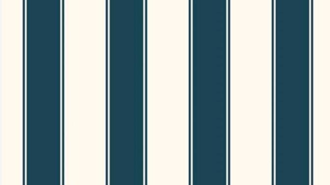 Stripes of Legacy 580544