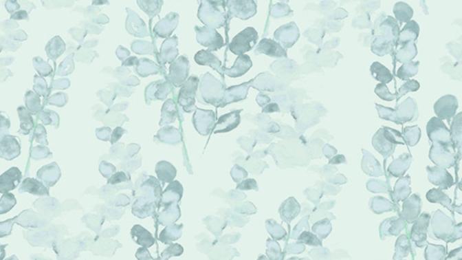 Eucalyptus 510441