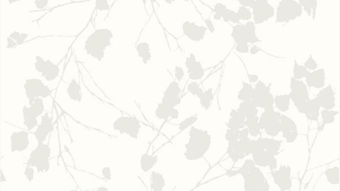 Birch Leaves 510222