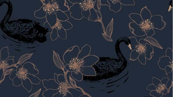 Swan 640820