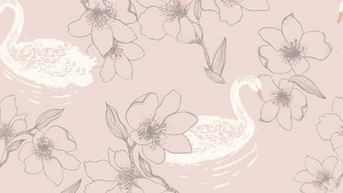 Swan 640819