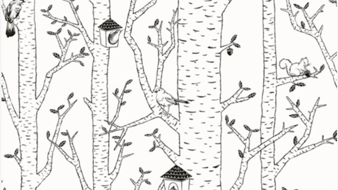 Birds Hood 561127