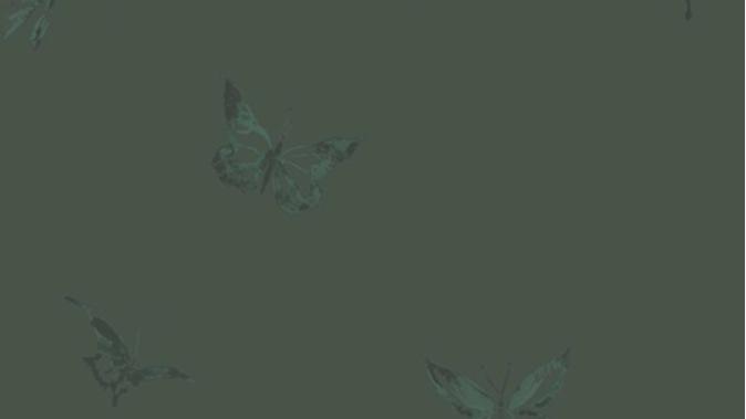 Butterflies 510005