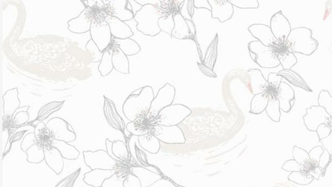 Swan 640818