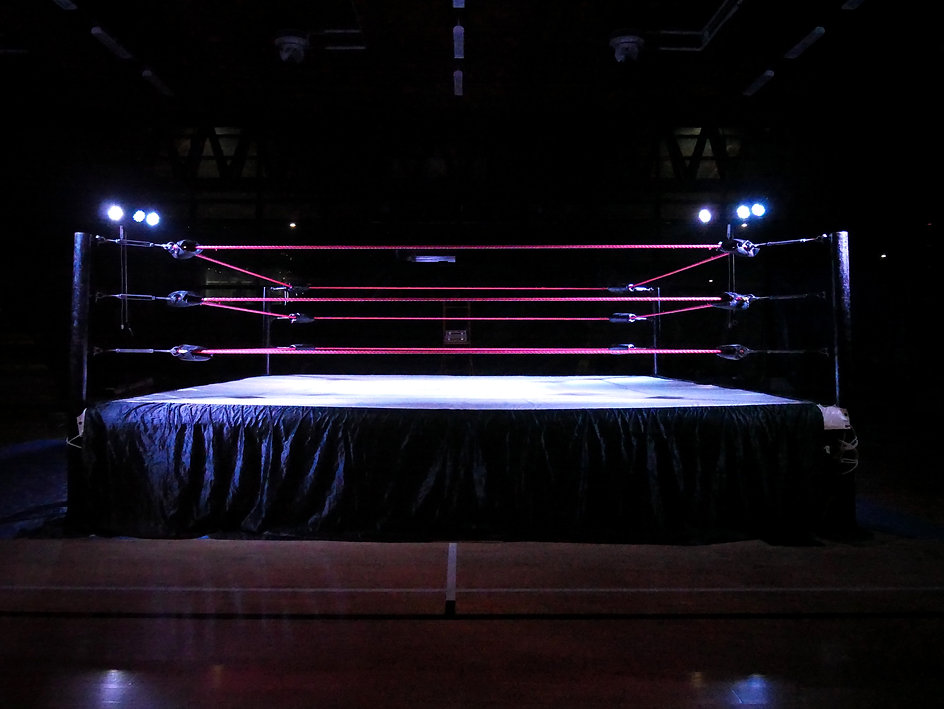 Wrestling ring light.jpg