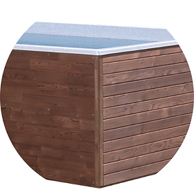dreveny-kabinet-pro-swim-spa.png