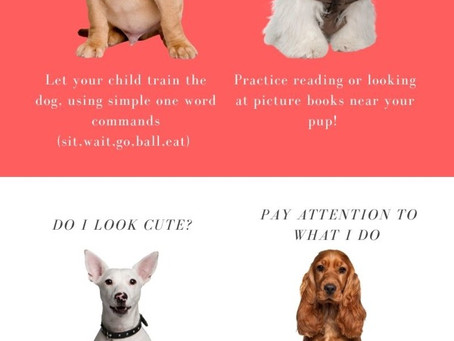 Speech Therapy Tricks: Learn with the Pups