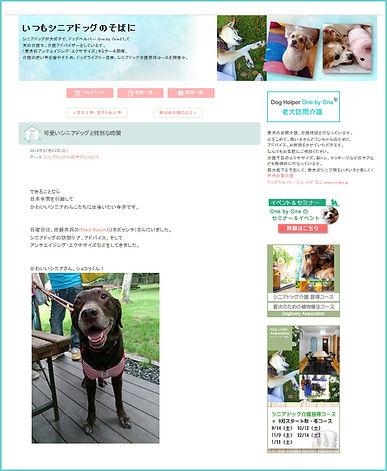 老犬介護ブログ