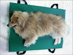 老犬介護ベッド サイズのご参考