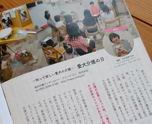 2017年 7月シニア犬の情報誌、ぐらんわんに掲載されました。