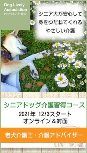 2021-seniorwinter-banner.jpg