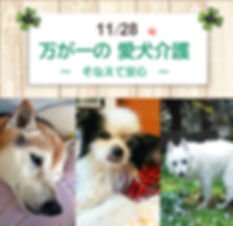 万が一の愛犬介護セミナー