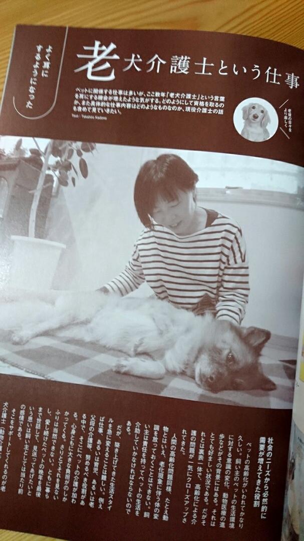 老犬介護士 寺井聖恵