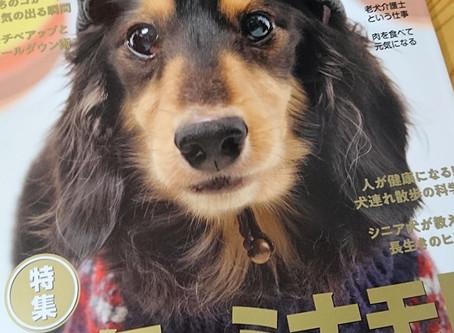 2018年12月 ダックススタイルで老犬介護士として紹介されました