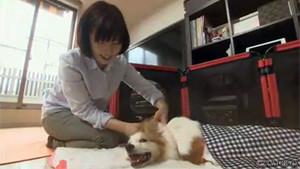 2013年10月 テレビ東京の番組で紹介されました