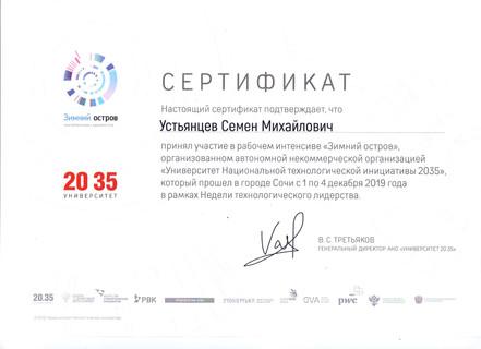 Сертификат Зимний остров (pdf.io) (1).jp