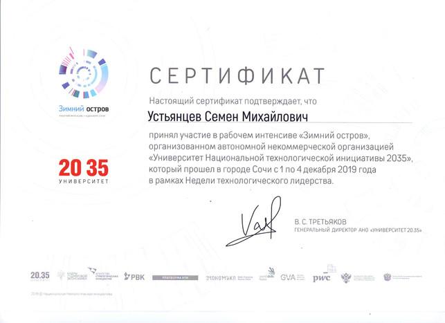 Сертификат Зимний остров (pdf.io).jpg