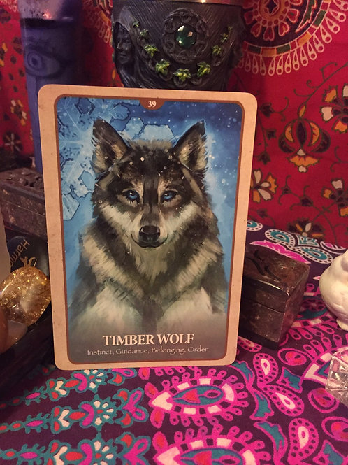 Messages from the animal spirit guides, 3 cards or