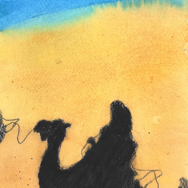 Day13: Dune