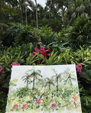 Sketch in the  garden
