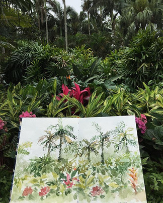 Sketch in the  garden