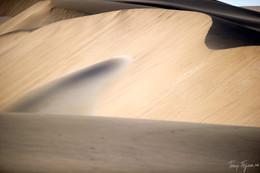 Dune Slip Face II