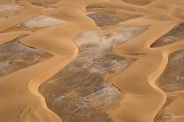 Namib Dunes II