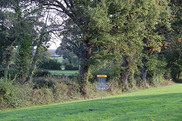 disc golf 1.jpg