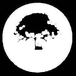 kaima Hebrew logo
