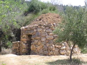 עלון מס' 9: 15.8.13 - על בקשות התירס, אגדות ושומרות