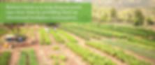 kaima beit zait farm