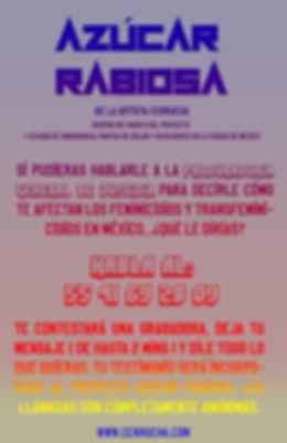 AzucarRabiosa_convocatoria_poster_FB.jpg