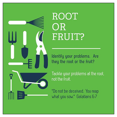 Root or Fruit Front.jpg