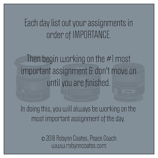 Assignment Focus Back.jpg