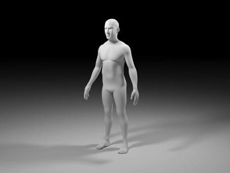 Human Anatomy Study: Body